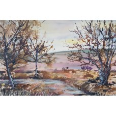 Winter in the New Forest 4