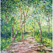 Pathway in the New Forest 3