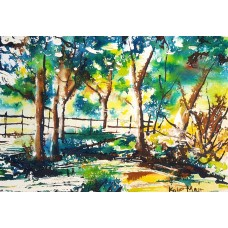 Summer in the New Forest 1